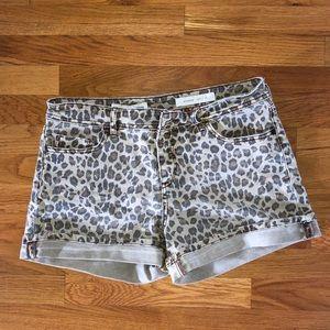 Pilcro Leopard Shorts